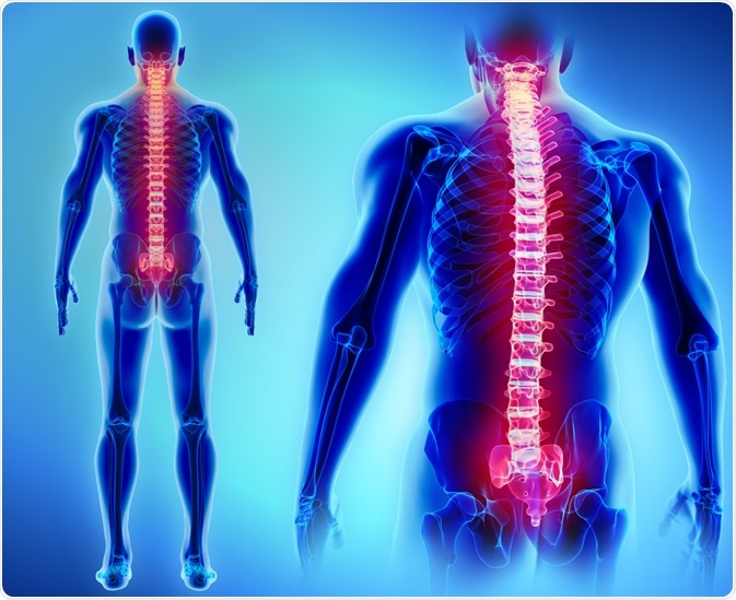 stem cell treatment, spinal cord stem cells, stem cell injection spine, spinal cord injury stem cell therapy,