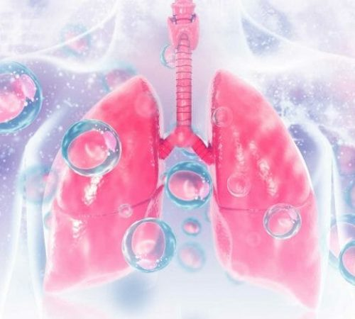 lung3