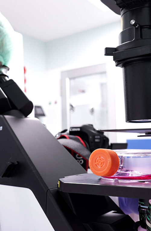 stemcells21-lab-4.jpg